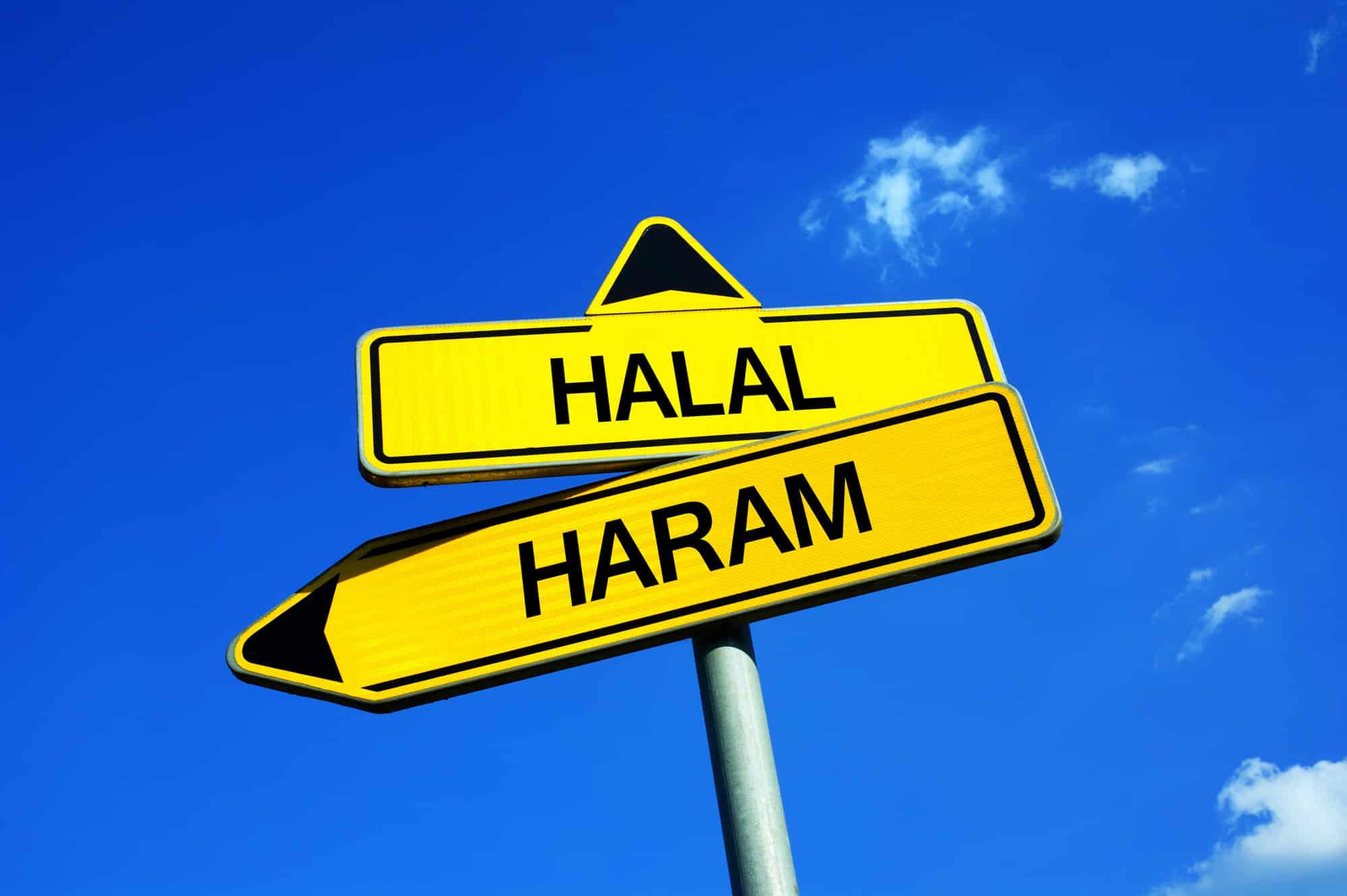 Suivre les injonctions divines pr cheikh Mohamed Hendaz