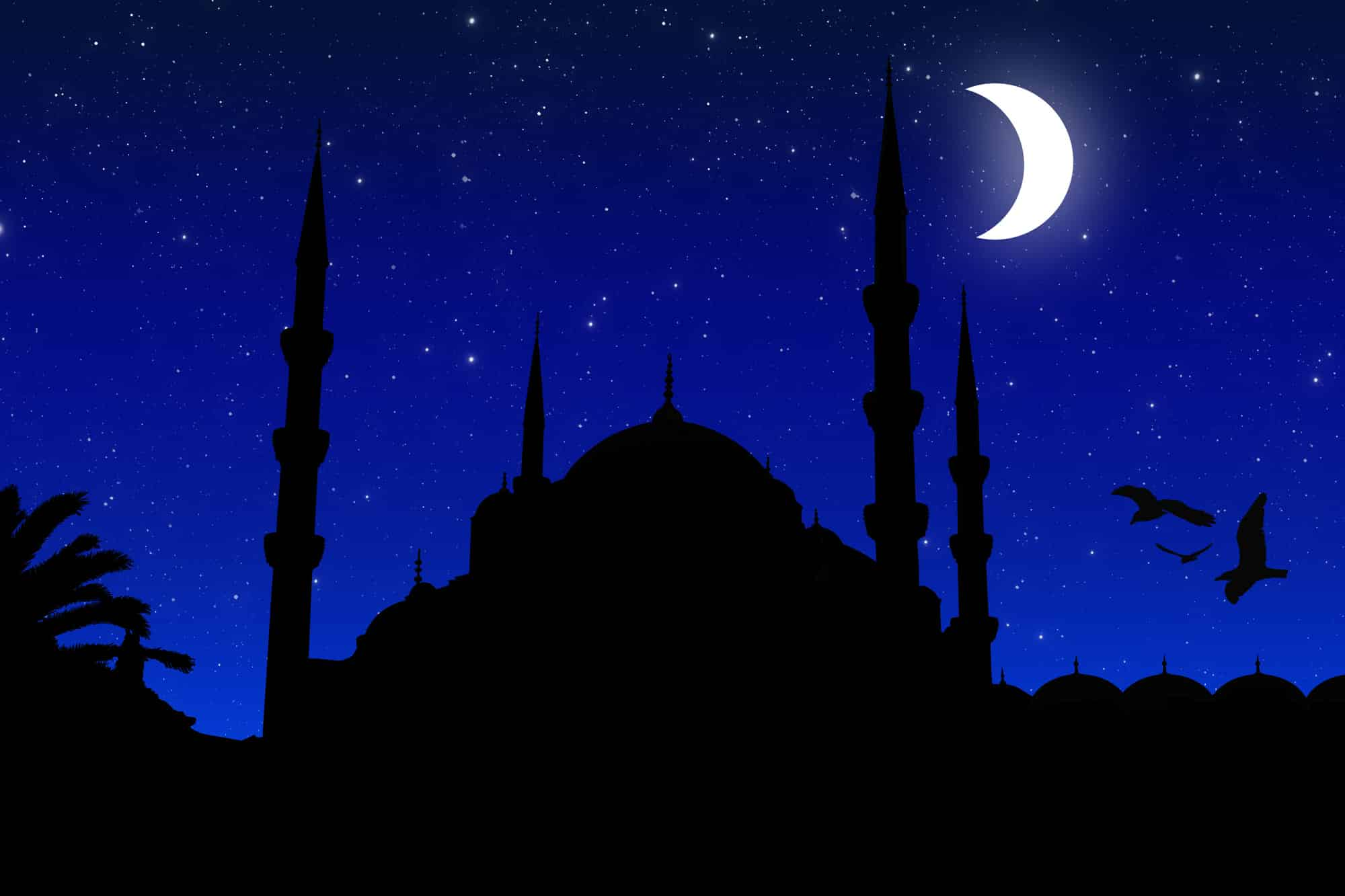 Le voyage nocturne et l'ascension du prophète de l'islam Muhammad par cheikh Mohamed Hendaz